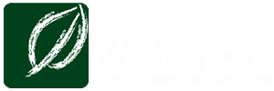 Wilderness Environmental